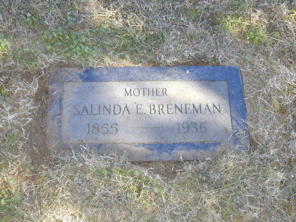 Salinda Breneman  -  396