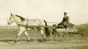 "Constantine ""Tom"" Breneman & Horse & Buggy"